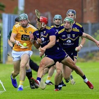 Antrim stay in top division after Wexford draw