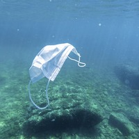 Tony Bailie's Take on Nature: Living in the plastic age