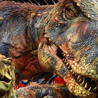 Tyrannosaurus rex youngsters may have wiped out medium-sized dinosaurs – study