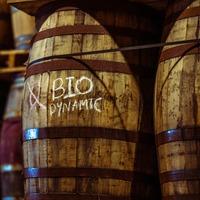 Unusual methods used to produce Ireland's first biodynamic whisky