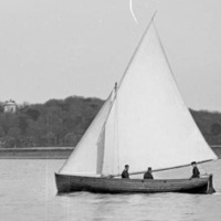 Anne Hailes: Discovering the mystery of the Mountstewart and Strangford Lough's 'Bermuda Triangle'