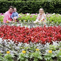 Dáithí Mac Gabhann helps unveil heart-shaped flowerbed to raise awareness of organ donation
