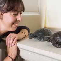 Slowly does it… bronze tortoises stolen 30 years ago return home
