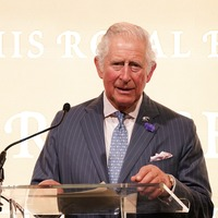 Human and animal world overlap causing rise of deadly diseases, Charles warns