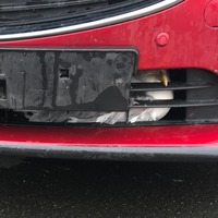 Gull has lucky escape after getting trapped in grille of car