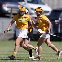 Mother Carey boosts Antrim by netting crucial goal to sink Cats
