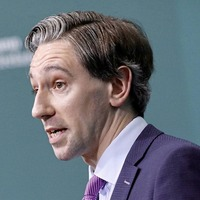 Cabinet leak allegation is untrue, Simon Harris insists