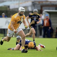 """""""Almost impossible"""" for Antrim hurling to stay in top tier without changes: Neil McManus"""