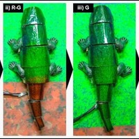 Soft robot inspired by the chameleon can mimic its surroundings