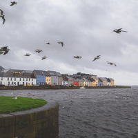 Ireland is becoming warmer and wetter - new report paints stark picture of impact of climate change