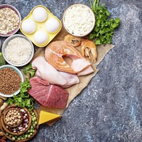 Study suggests low-carb diet won't harm your kidneys