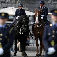 Gardaí honoured at 'bittersweet' ceremony in Dublin Castle