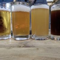 Craft beer: Birthday beers courtesy of Carlingford Brewery taproom