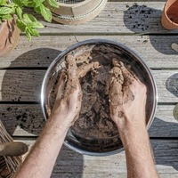 Gardening: Want to attract wildlife to your garden? Homemade seed bombs could be the answer