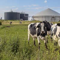 London-listed energy JV buys anaerobic digestion plant at Eglinton